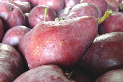 Organic Starkrimson Pears