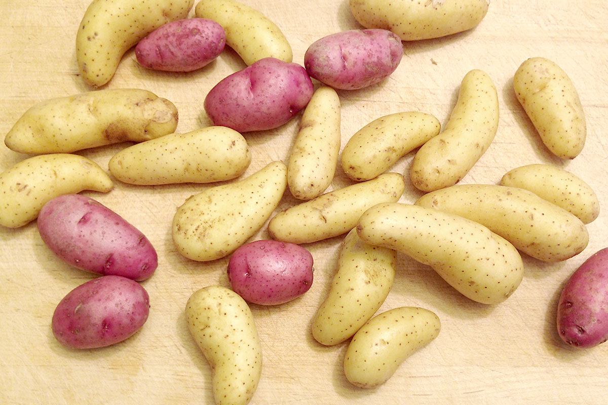 Organic Fingerling Potatoes