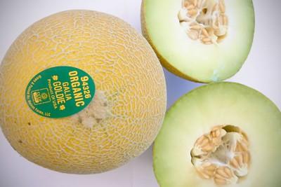 Organic Gaia Melons
