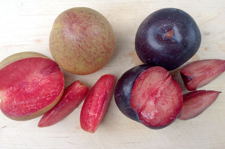 Organic Pluots