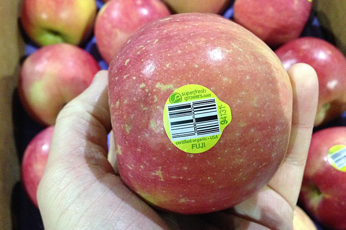 Image result for fuji apple