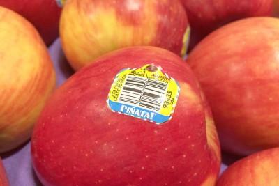 Organic Pinata Apples