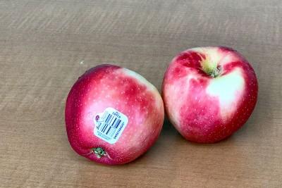 Sweetango Apples