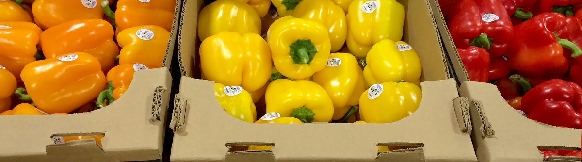 Organic Colored Bell Peppers