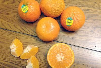 Organic Murcott Mandarins