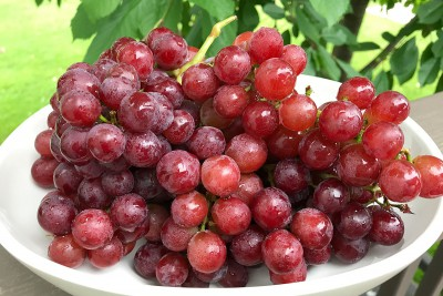 Red Flame Seedless Grapes