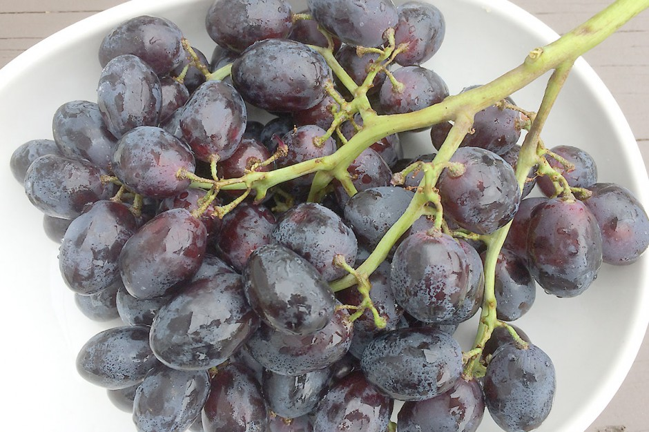 Organic Black Seedless Grapes