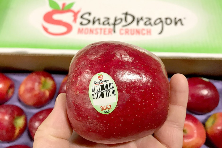 SnapDragon Apples