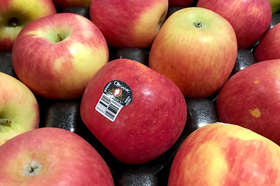 Organic Lady Alice Apples